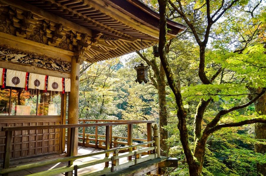 Haïkus du bout du Monde - Hosai - Les Petites Analyses - Japon